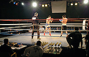 Nijmegen, 25-1-2004..Kickboksen. boksgala, kansarme jongeren, vechtsport, boksring, hoofdletsel, hersenletsel, risico, bekers, prijs...Foto: Flip Franssen/Hollandse Hoogte