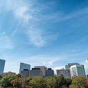 The skyline of Rosslyn, Arlington, on a bright day, as seen from Theodore Roosevelt Island. Copyspace.