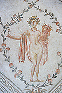 Detail from the Roman mosaic panel of the Triumph of Neptune and  the mytrhical legend of The Four Seasons. From the private baths at Caput Vada (La Chebbs). End of the reign of Antoninus Pius, 138-161 AD. From Cheba, Tunisia.  The Thugga Room of The Bardo Museum, Tunis, Tunisia. .<br /> <br /> If you prefer to buy from our ALAMY PHOTO LIBRARY  Collection visit : https://www.alamy.com/portfolio/paul-williams-funkystock/roman-mosaic.html - Type -   Bardo    - into the LOWER SEARCH WITHIN GALLERY box. Refine search by adding background colour, place, museum etc<br /> <br /> Visit our ROMAN MOSAIC PHOTO COLLECTIONS for more photos to download  as wall art prints https://funkystock.photoshelter.com/gallery-collection/Roman-Mosaics-Art-Pictures-Images/C0000LcfNel7FpLI