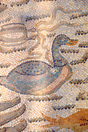 Duck mosaic - Roman mosaics at the Villa Romana del Casale which containis the richest, largest and most complex collection of Roman mosaics in the world. Constructed  in the first quarter of the 4th century AD. Sicily, Italy. A UNESCO World Heritage Site. .<br /> <br /> If you prefer to buy from our ALAMY PHOTO LIBRARY  Collection visit : https://www.alamy.com/portfolio/paul-williams-funkystock/villaromanadelcasale.html<br /> Visit our ROMAN MOSAIC PHOTO COLLECTIONS for more photos to buy as buy as wall art prints https://funkystock.photoshelter.com/gallery/Roman-Mosaics-Roman-Mosaic-Pictures-Photos-and-Images-Fotos/G00008dLtP71H_yc/C0000q_tZnliJD08