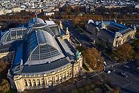 France, Paris (75), les rives de la Seine, classées Patrimoine Mondial de l'UNESCO, le Grand Palais et le Petit Palais // France, Paris, the Grand Palais and the Petit Palais