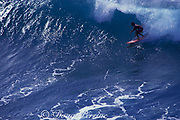 surfer at Honolua Bay,<br /> Maui, Hawaii, USA ( Pacific )
