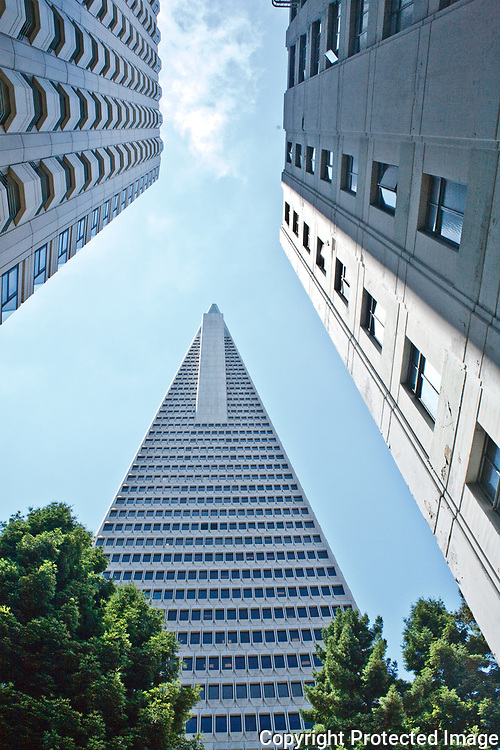 Transamerica Pyramid in downtown San Francisco