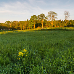 A field on a hill above the Oyster River at Emery Farm in Durham, New Hampshire.