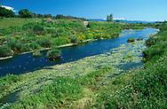 Mediterranean River, Lesvos