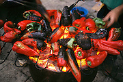 Roasting red peppers for preservation and canning. Santo Domingo, Rioja Region, Spain.