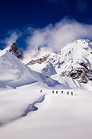 Skiing Seduction Drainage, Icefall Lodge, BC Canada, February 2014.