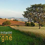 Best of Auvergne PDF
