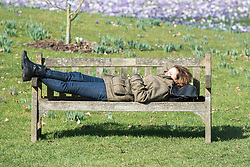 © Licensed to London News Pictures. 11/03/2015. Kew, UK. A woman rests on a bench in the warm sunshine.People enjoy the crocus displays at Kew Garden's today 11th March 2015. The display features the variety Crocus tommasinianus. The Uk has enjoyed warm sunny weather this week.  Photo credit : Stephen Simpson/LNP