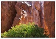 Rock pillars near Sand Dune Arch at Arches National Park, Utah, USA
