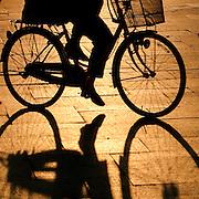 Bicycle shadow, Hiroshima, Japan (June 2004)