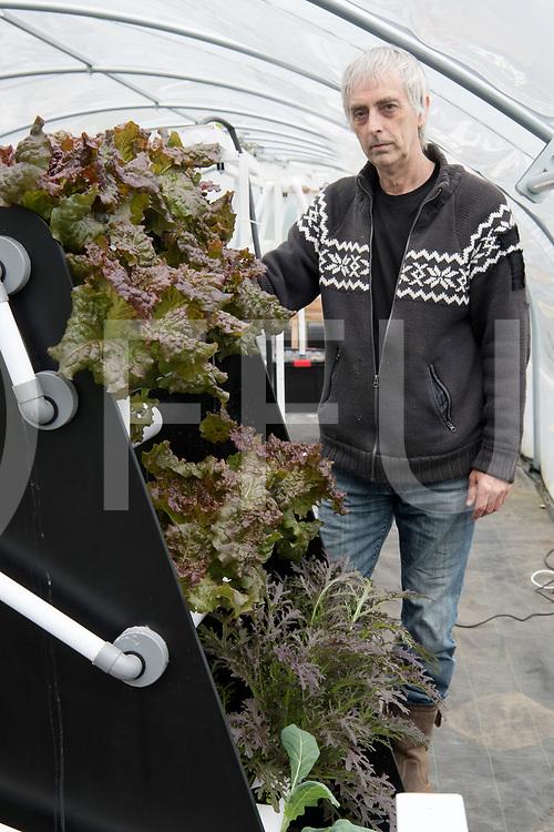 LEMELERVELD - Hydroponics.<br /> Groente kweken op water.<br /> Foto: Ed van der Post met Muzina.<br /> FFU PRESS AGENCY COPYRIGHT Harry Kruipers