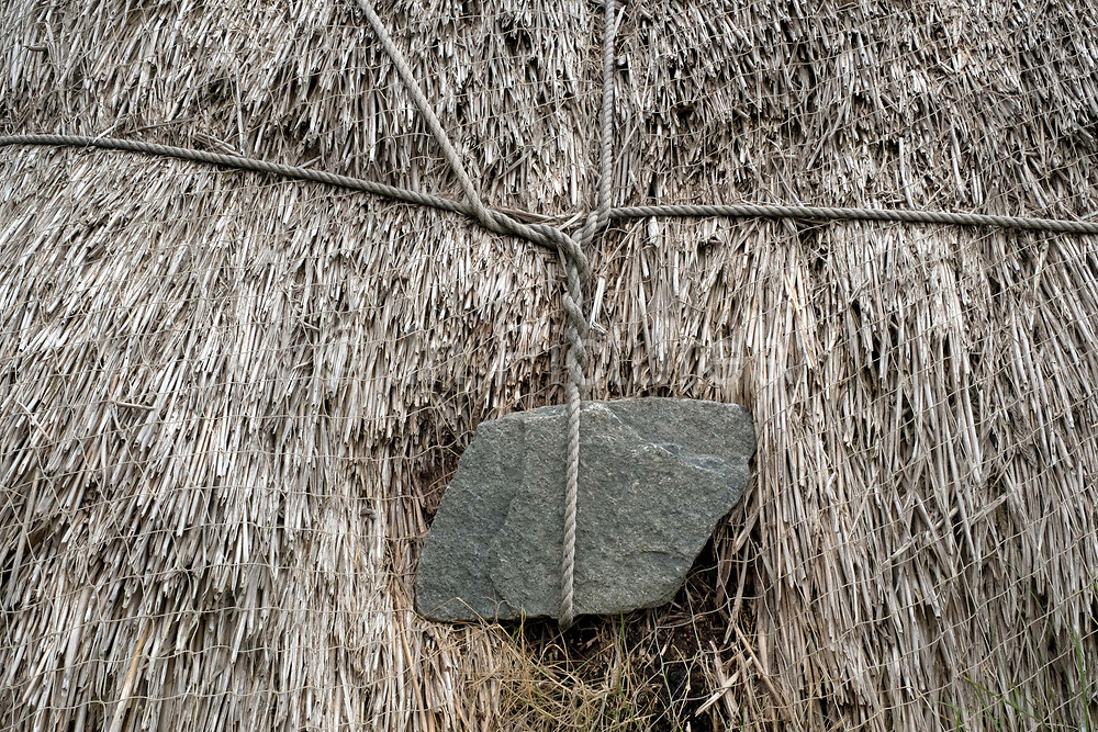 The thatched roof weighed down by a stone hanging on wire on a restored traditional Hebridian blackhouse at Carloway on the Isle of Lewis, Outer Hebrides, Scotland on 18 July 2018. Blackhouses are the traditional crofting farmhouse of the Isle of Lewis, the double drystone walls, the low profile and the insulating thatch made the houses suitable for the Hebridean weather and all the building materials were natural and found locally