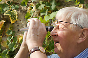 Will Gissane outside the winery at his Herefordshire home, using his refractometer, a tool used to measure the sugar content in wine grapes. <br /> CREDIT: Vanessa Berberian for The Wall Street Journal<br /> HOBBY-Gissane/UK