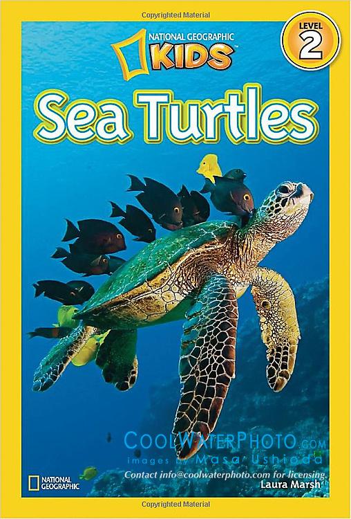 National Geographic KIDS Sea Turtles, book cover use, USA, Image ID: Green-Sea-Turtle-0100-V