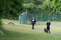 ©Licensed to London News Pictures 19/06/2020<br /> Orpington, UK. A large number of Metropolitan police are currently dealing with an incident at a recreation ground in Orpington, South East London. A large police cordon is in place while the investigation continues. Local reports on social media suggest it is a possible stabbing. Photo credit: Grant Falvey/LNP