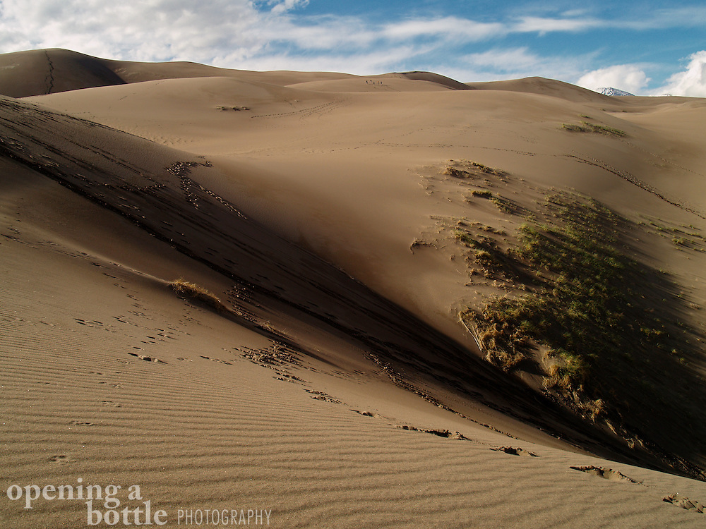 Grass meadow and footprints upon sand dunes, Great Sand Dunes National Park and Preserve, Colorado. Much of the park's interior has been designated as a federal wilderness area.