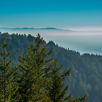 Haze obscures the Pacific Ocean, as viewed looking south from the slopes of Mount Tamalpais, California.