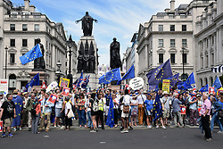Anti Brexit demo, London 23 June 2018 UK. Campaign for a People's Vote on the final Brexit deal. Crimea statue in background