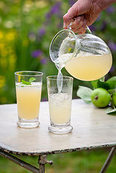 Homemade apple and ginger cordial