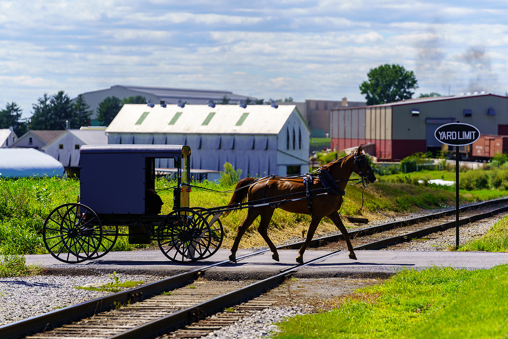 Ronks, PA, USA - August 30, 2020: An Amish horse-drawn buggy crosses railroad tracks on a rural road in Lancaster County.
