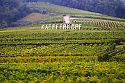 vineyard kaefferkopf grand cru ammerschwihr alsace france