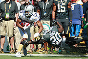 January 31 2016: Team Rice Amari Cooper catches a pass during the Pro Bowl at Aloha Stadium on Oahu, HI. (Photo by Aric Becker/Icon Sportswire)