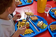 Primary school children enjoying school dinner. Fish, chips, sweetcorn, salad and cake served on a blue plastic plate.