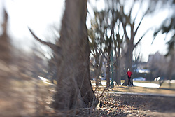 A man jogs on a trail in the background of an ethereal park scene