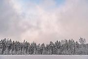 Silent morning over frozen nameless lake and surrounding forests on snowy winter day in Vidzeme, near Nītaure, Vidzeme, Latvia Ⓒ Davis Ulands | davisulands.com