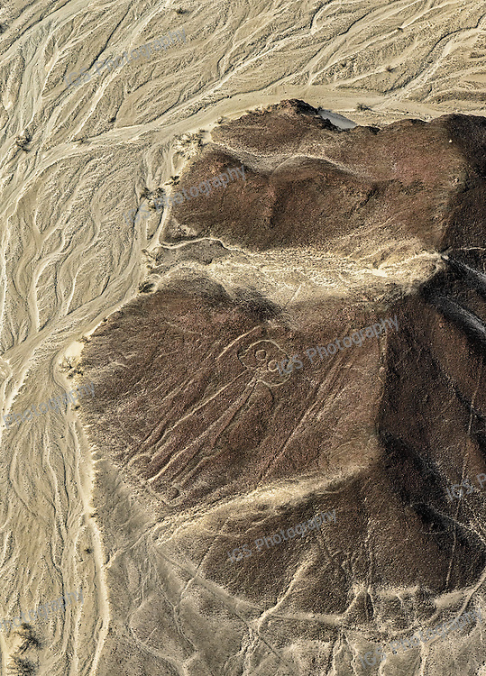 The geoglyphs of Nasca and the pampas of Jumana, depict living creatures, stylized plants and imaginary beings, as well as geometric figures
