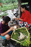 Paugata Lagavale (in red) and a friend from college pluck chickens for dinner in Western Samoa. Published in Material World page 173. Food, Work. The Lagavale family lives in a 720-square-foot tin-roofed open-air house with a detached cookhouse in Poutasi Village, Western Samoa.