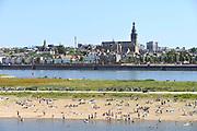 Nederland, nijmegen, 19-6-2016 Mensen trekken massaal naar de oevers van de waal en de nieuwe spiegelwaal in het rivierpark aan de overkant van Nijmegen . Het nieuwe recreatiegebied is een aanwinst voor de stad en omgeving. Foto: Flip Franssen