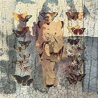 "Transformation of The Fool. Fool feeling and embodying the pain and nausea of a Chrysalis Dream cracking. <br /> <br /> http://www.metmuseum.org/art/collection/search/285851<br /> <br /> 2005.100.255<br /> Author: Eugenia Burnett Tinsley<br /> https://creativecommons.org/publicdomain/zero/1.0<br /> <br /> https://www.rijksmuseum.nl/en/collection/RP-P-OB-201.436<br /> <br /> Butterflies<br /> Object typeprint<br /> Object numberRP-P-OB-201.436<br /> Inscriptions / marks<br /> collector's mark: Lugt 2760<br /> DescriptionBlad met 18 voorstellingen van verschillende vlinders. Onder elke vlinder een naam in het Nederlands en in het Latijn. Genummerd midden onder: Nro. 123. Genummerd rechtsboven: 123.<br /> Creation<br /> Artist<br /> maker: Ernst Fröhlich<br /> Hermann van der Moolen (mentioned on object)<br /> publisher: K. Braun en Fr. Schneider<br /> printer: dr. C. Wolf & Sohn (mentioned on object)<br /> Placemaker: München<br /> Geldern<br /> publisher: München<br /> printer: München<br /> Dating1843 - c. 1880<br /> Material and Technique<br /> Materialpaper<br /> Techniqueletterpress printing<br /> Measurementsh 443 mm × w 353 mm<br /> Explanatory note<br /> Nederlandse editie van een prent uit de reeks ""Munchener platen"" uitgegeven door K. Braun & Fr. Schneider te München met het adres van wederverkoper Hermann van der Moolen.<br /> Subject<br /> What<br /> insects: butterfly<br /> Acquisition and rights<br /> Credit line<br /> Gift of F.G. Waller, Amsterdam<br /> Acquisitiongift 1923<br /> CopyrightPublic domain"