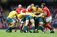 Nick Phipps, the Australia scrum half (l) kicks clear.  Under Armour 2016 series international rugby, Wales v Australia at the Principality Stadium in Cardiff , South Wales on Saturday 5th November 2016. pic by Andrew Orchard, Andrew Orchard sports photography
