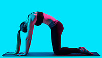 one caucasian woman exercising cat pose yoga exercices  in silhouette studio isolated on blue background