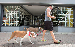 A man walks his dogs past a store with its windows tapped up in preparation for hurricane Irma Friday, September 8, 2017 in Hollywood, FL, USA. Photo by /Paul Chiasson/CP/ABACAPRESS.COM