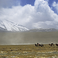 A Khyrgiz nomad leads his Bactrian Camels below 7,546-meter Mustagh Ata in the Pamir Mountains of Xinjiang, China.