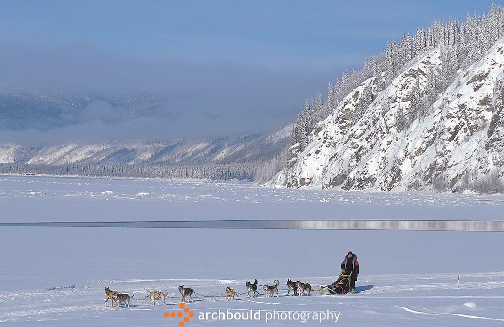 Dog musher on Yukon River, Yukon