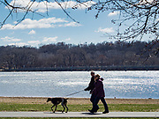 """29 MARCH 2020 - DES MOINES, IOWA: People walk their dog on an empty trail around Gray's Lake, a popular park and lake near downtown Des Moines Sunday. On Sunday morning, 29 March, Iowa reported 336 confirmed cases of the Novel Coronavirus (SARS-CoV-2) and COVID-19. There have been four deaths attributed to COVID-19 in Iowa. Restaurants, bars, movie theaters, places that draw crowds are closed until 07 April. The Governor has not ordered """"shelter in place""""  but several Mayors, including the Mayor of Des Moines, have asked residents to stay in their homes for all but the essential needs. People are being encouraged to practice """"social distancing"""" and many businesses are requiring or encouraging employees to telecommute.        PHOTO BY JACK KURTZ"""