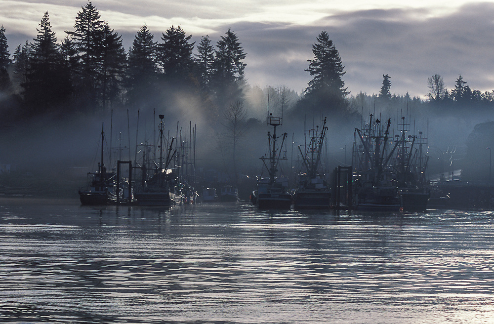 Harbor with fishing fleet in Quadra Island, near Campbell River, British Columbia, Canada