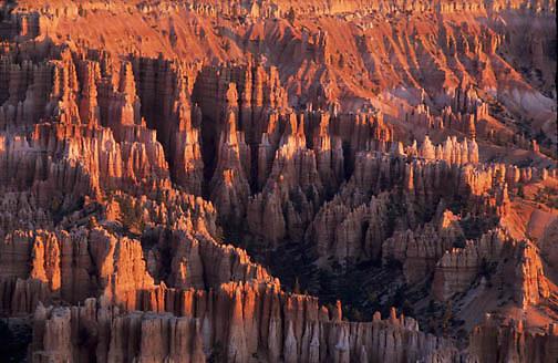 "Bryce Canyon National Park, Towering rock pillers known as """"hoodoos"""". Southern Utah."