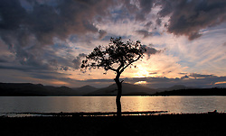 Pictured: Milarrochy Bay during sunset. Loch Lomond.