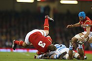 Tomas Francis of Wales takes a tumble. Under Armour 2016 series international rugby, Wales v Argentina at the Principality Stadium in Cardiff , South Wales on Saturday 12th November 2016. pic by Andrew Orchard, Andrew Orchard sports photography