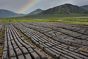 A bank of turf at Ballaghisheen, Glencar, County Kerry, Ireland.<br /> Picture by Don MacMonagle - macmonagle.com