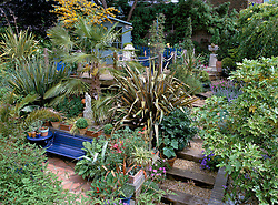 Railway sleeper and gravel steps in terraced garden. Architectural planting of phormiums and palms. Summerhouse on raised deck
