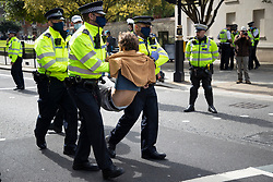 © Licensed to London News Pictures. 02/09/2020. London, UK. Police arrest an Extinction Rebellion protester after he glued herself to the a road outside the Houses of Parliament . The environmental activist group have continued to block roads around parliament in an attempt to disrupt PMQs.  Photo credit: George Cracknell Wright/LNP