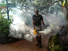 Miami: Zika Prevention