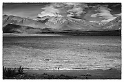 new zealand, black and white, photography