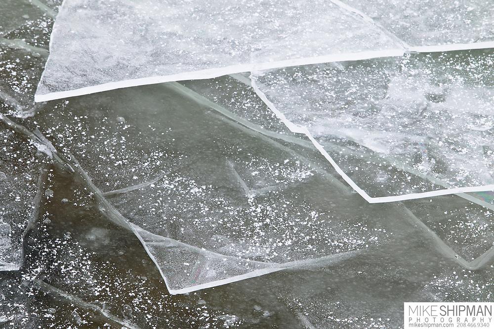 Thin ice buildup on the reservoir, Lake Lowell, Deer Flat National Wildlife Refuge
